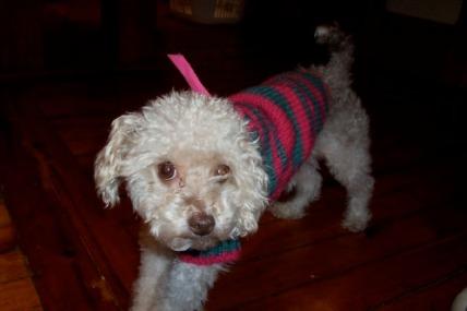 nina-sweater-2.jpg