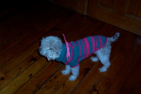 nina-sweater-3.jpg
